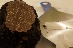 primi-paparill-roseto (18)
